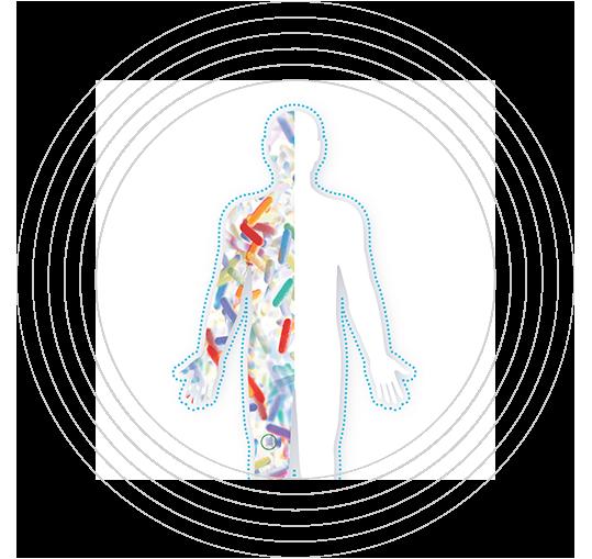 Ανθρώπινος υπερ-οργανισμός