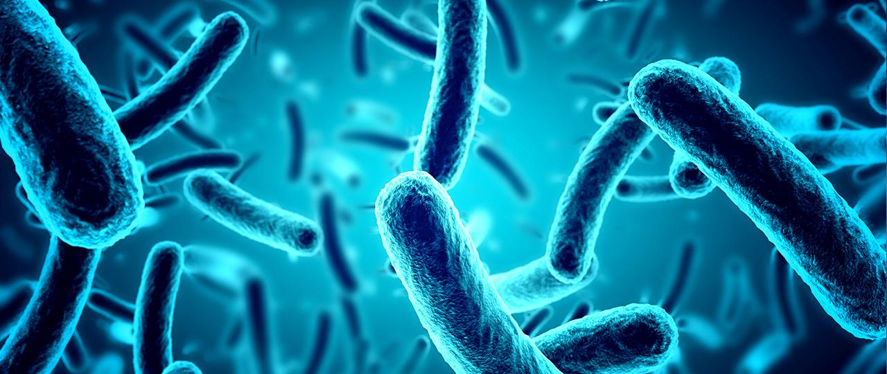 Στοματικά βακτήρια
